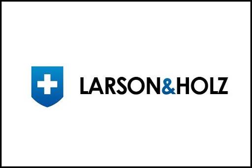 обзор 2020 Larson&Holz