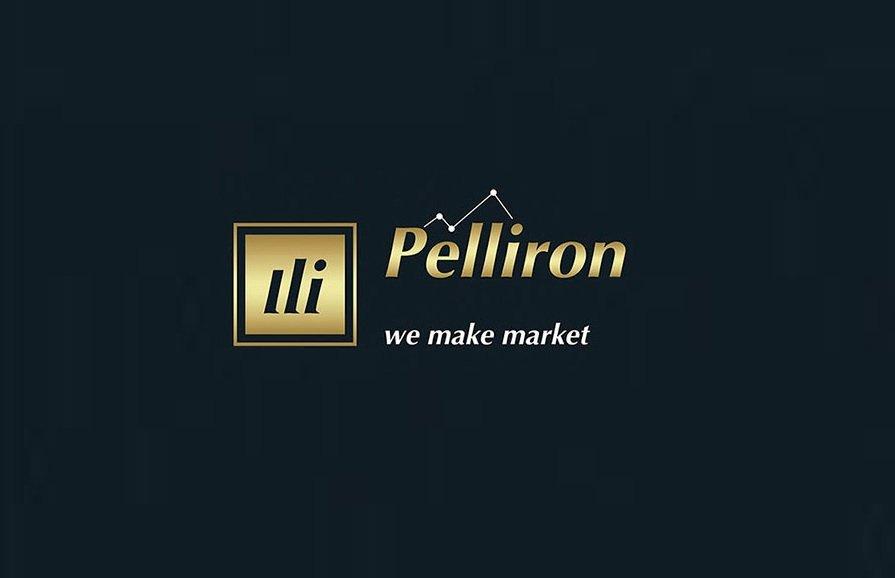 логотип pelliron