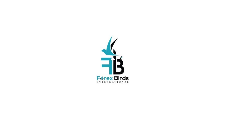 логотип компании forex birds